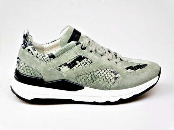 Kennel und Schmenger Sneaker shilf - Bild 1